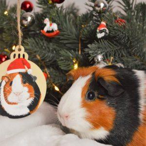 Boule Noël portrait animal peint main personnalisé kitsch lorraine 1